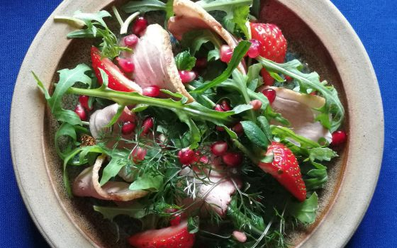 SMOKED DUCK, STRAWBERRY & POMEGRANATE SALAD